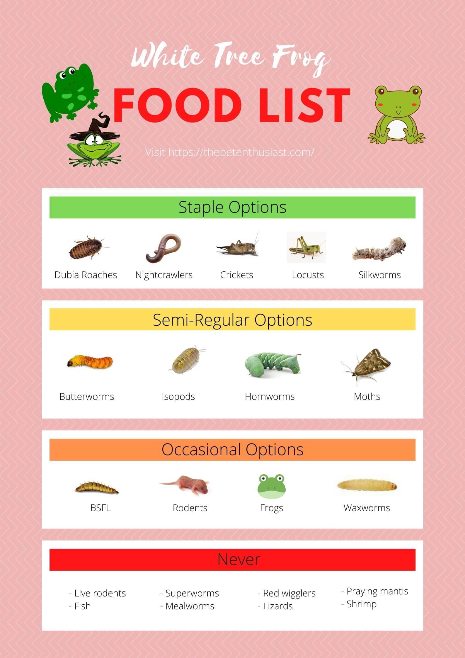 White Tree Frog Food Chart