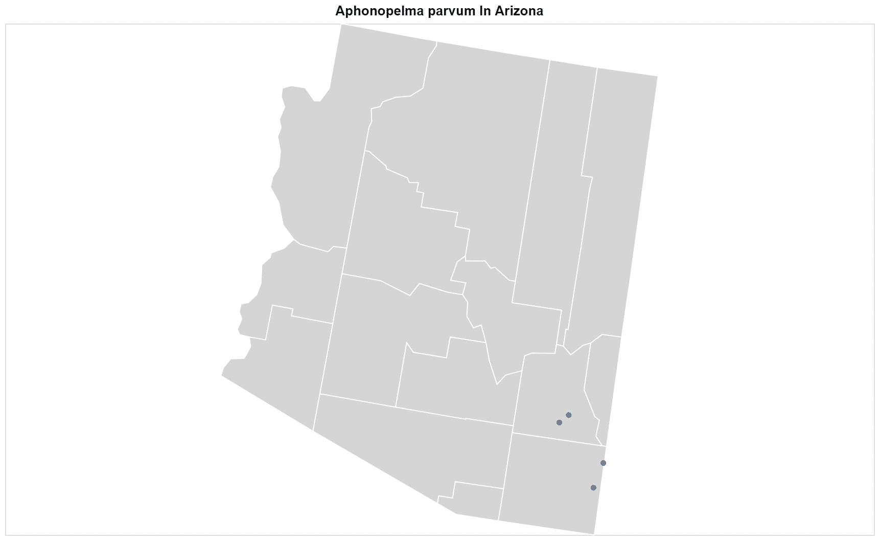 Aphonopelma parvum map