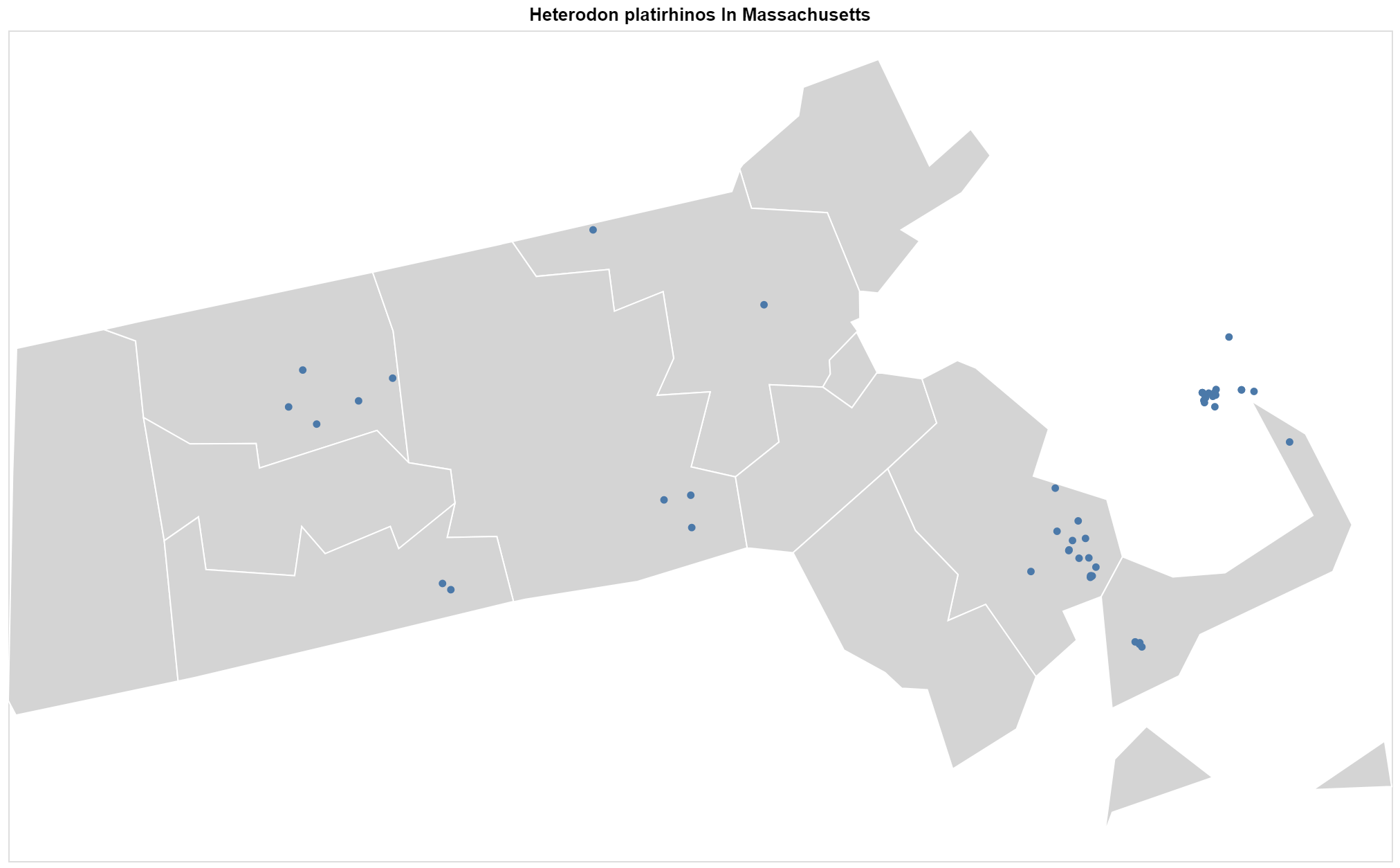 Heterodon platirhinos Massachusetts map