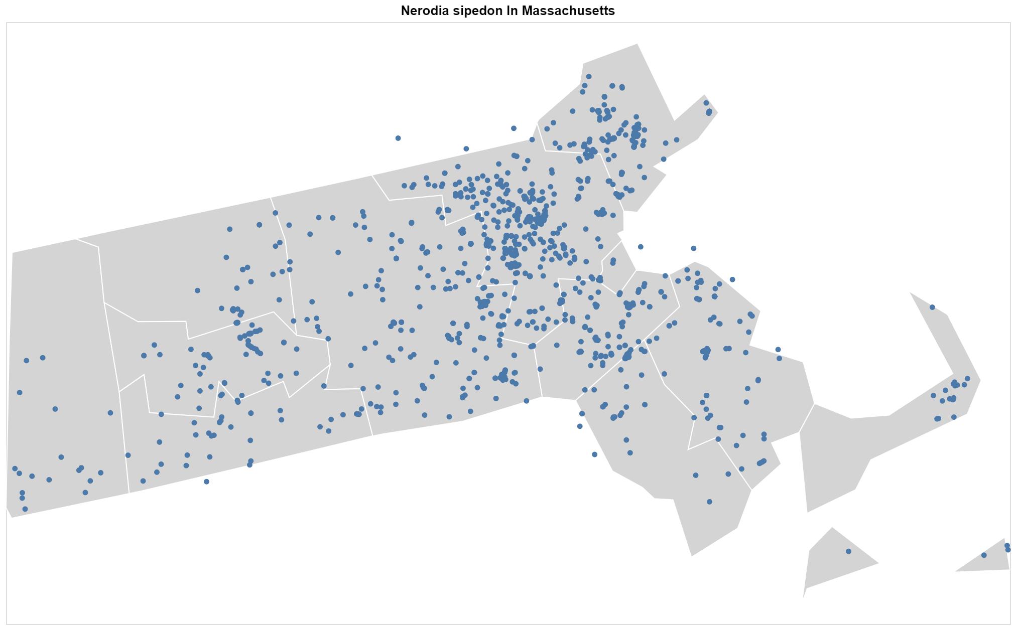 Nerodia sipedon Massachusetts map