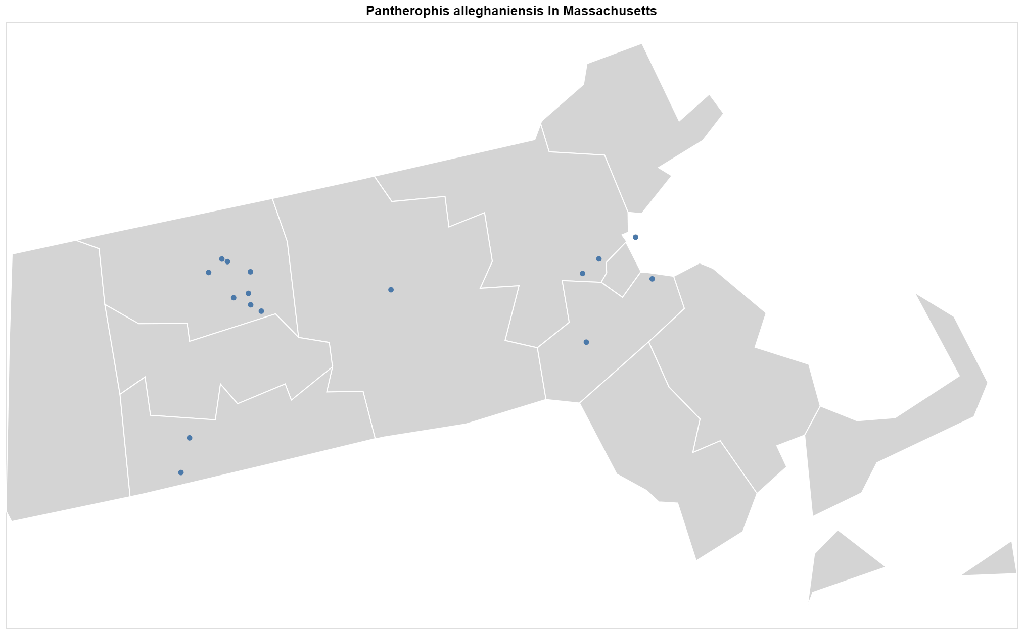 Pantherophis alleghaniensis Massachusetts map